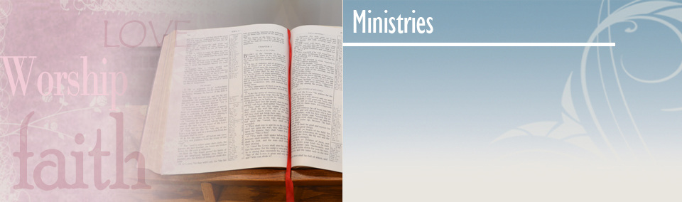 Adult Ministry image